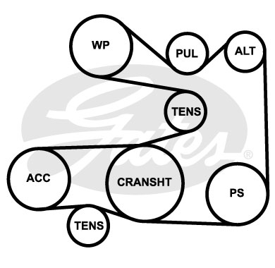 S6058 fan belt diagram bmw driver net forums e46 pulley diagram at virtualis.co